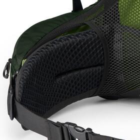 Osprey Aether AG 60 Backpack Herr adriondack green